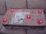 Package containing Charles Tucker violin